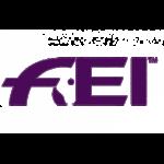 logo-FEI